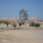 "The Arava / Desert where the 10 of us went with Bible and shofars to ""plant"" the Word of G-d into the ground."