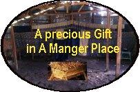 A-Precious-Gift